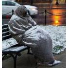 Homeless person covered in a snowy blanket sitting on a bench