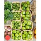 Fresh vegetables in a food bank
